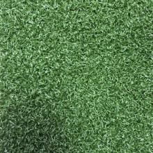 Augusta Putt Nylon Landscape Turf